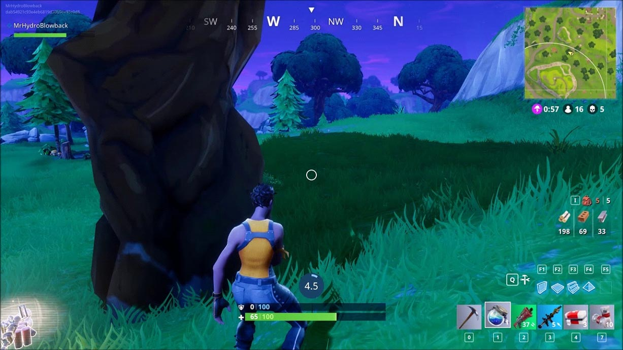 Fortnite Battle Royale hiding behind trees