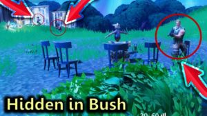 How to Hide in Fortnite Bushes