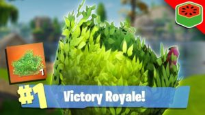 Learn to be a Camper and win the Victory Royale