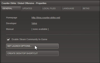 CS GO Steam Properties Screenshot